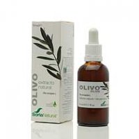 Olivo Extracto 50 ml